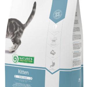 Natures Protection Kitten